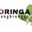 Be Happy  ICON Moringa Jungbrunnen EDITION